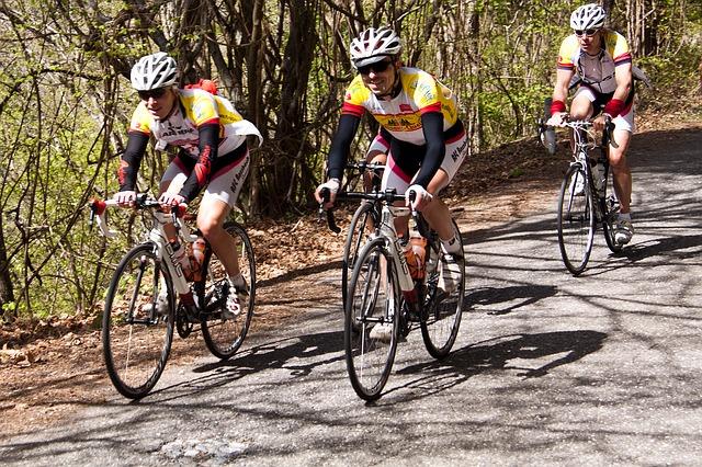 Mountainbike- und Rennradtouren